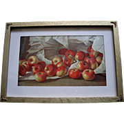 Apples Fruit Print Half Yard Long Antique
