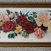 Antique Roses Yard Long Print Wells Chromolithograph c1895