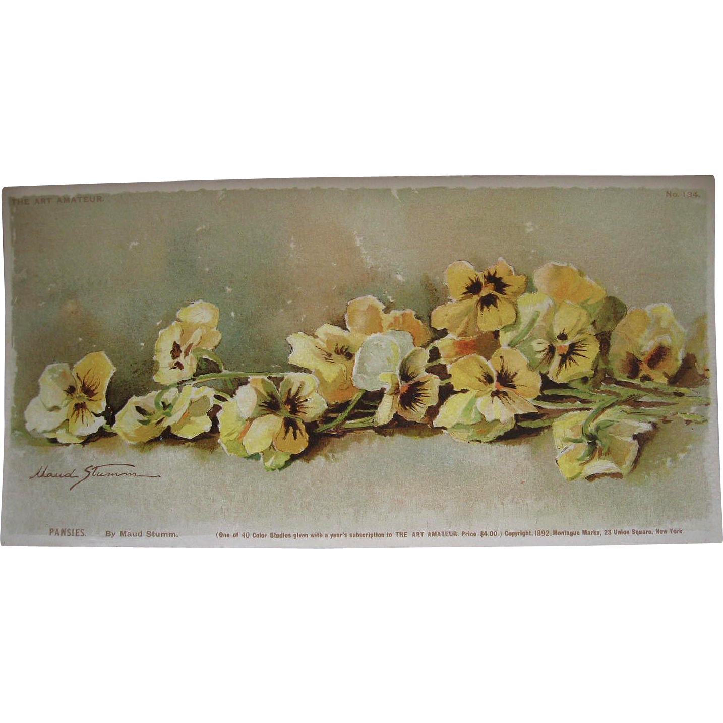Antique Pansy Print Maud Stumm Victorian Pansies Chromolithograph c1890s