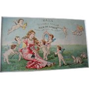 c1890s Halls Hair Renewer Print Advertising Trade Card Beauty Cosmetic Cupid Cherub Angel Lady Chromolithograph Quack Medicine Rabbit Bunny