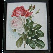 Antique Roses Print Paul de Longpre Victorian Chromolithograph c1890s