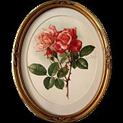 c1901 Roses Print Paul de Longpre Chromolithograph Antique Victorian