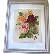Roses Print by Marie Low Chromolithograph Antique Victorian