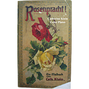 C Klein Roses Book Rosenpracht c1911 Six Color Plates Antique