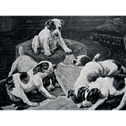 Antique Dog Puppy Print Victorian Engraving Dogs Puppies