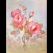 Vintage Pink Rose Print Lola Ades Roses