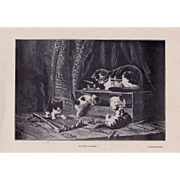 Antique Kitten Print Henriette Ronner Cat c1900