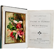 1884 Language Poetry of Flowers Book Roses Pansies Azalea  6 Chromo Plates  Symbolism Sentiment Virtue of Flowers
