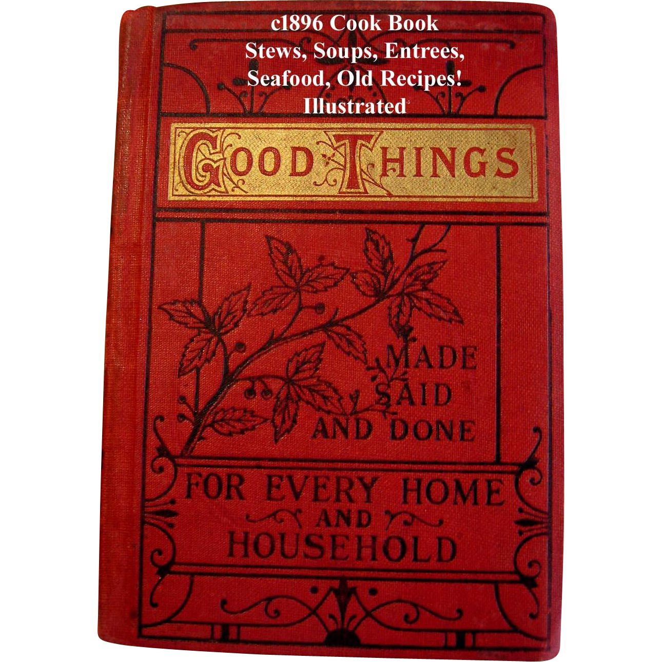 C1896 Cook Book Good Things Made Said Done for Every Home Household Baking Meat Fish Soup Cake Bread Pudding Quack Medicine Wonderful Illustrations