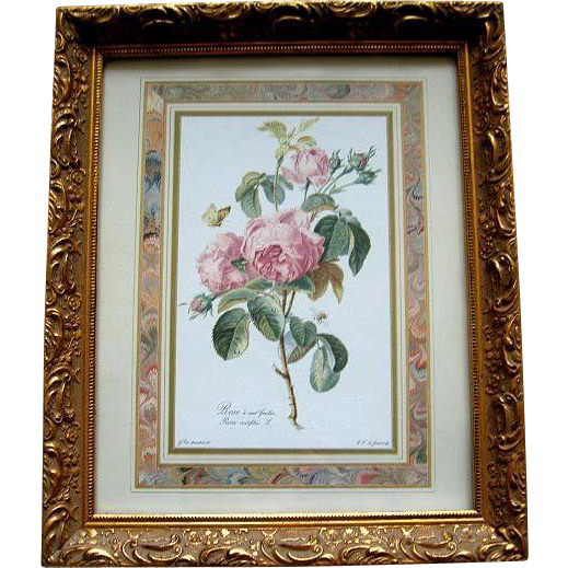 Roses Print Redoute Gold Leaf Frame