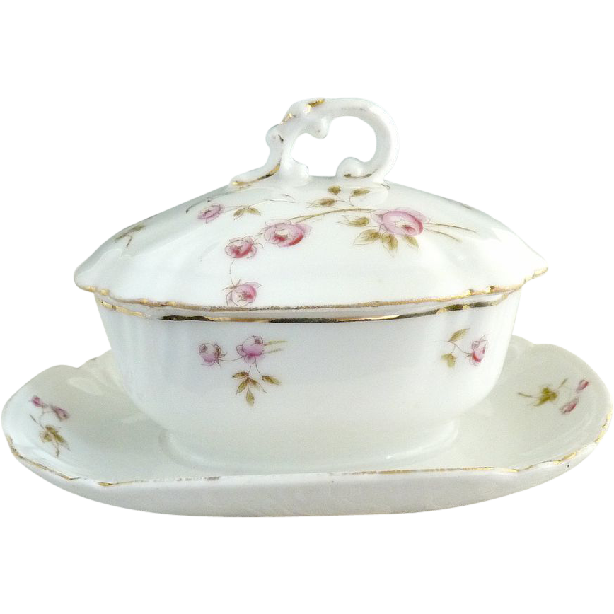 Antique porcelain mustard pot Bridal Rose Marx & Gutherz Austria