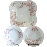 Marx & Gutherz porcelain berry bowl set c. 1898