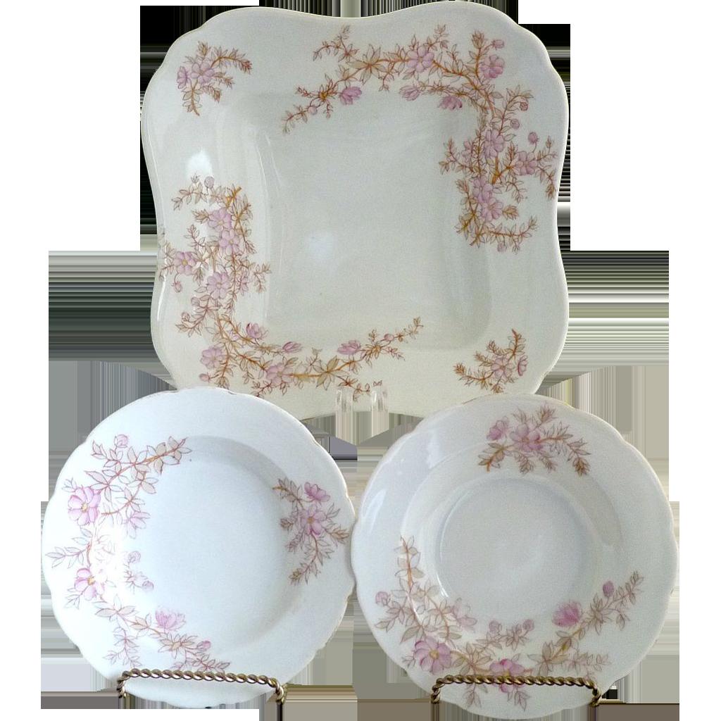 Marx & Gutherz porcelain berry bowl set c. 1898