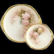 Vintage Austria porcelain dinnerware hand painted roses
