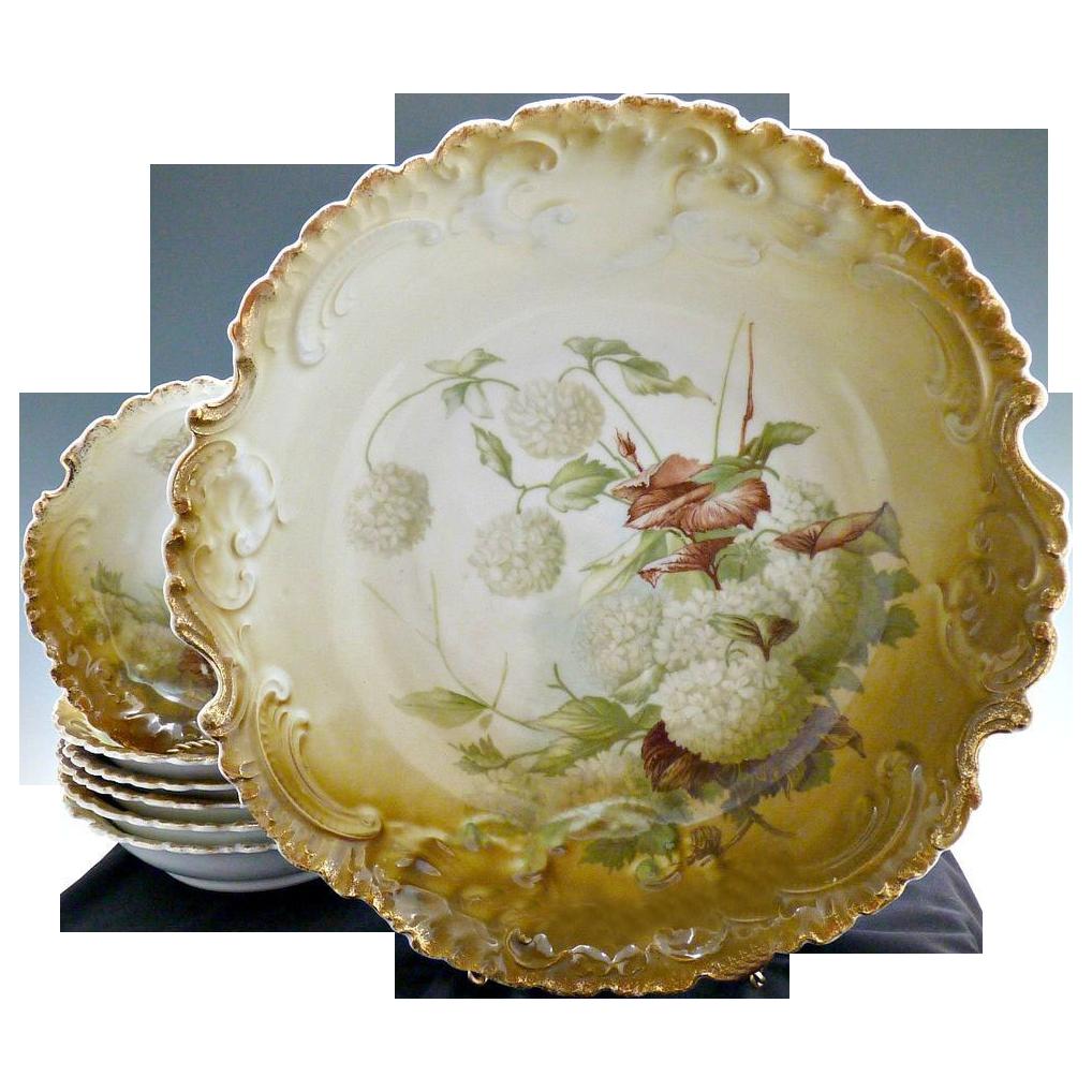 Antique berry set hydrangeas Rosenthal Bavaria c. 1900