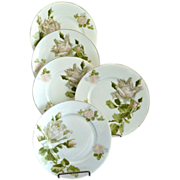 Hermann Ohme fine porcelain tea plates blush roses enameled