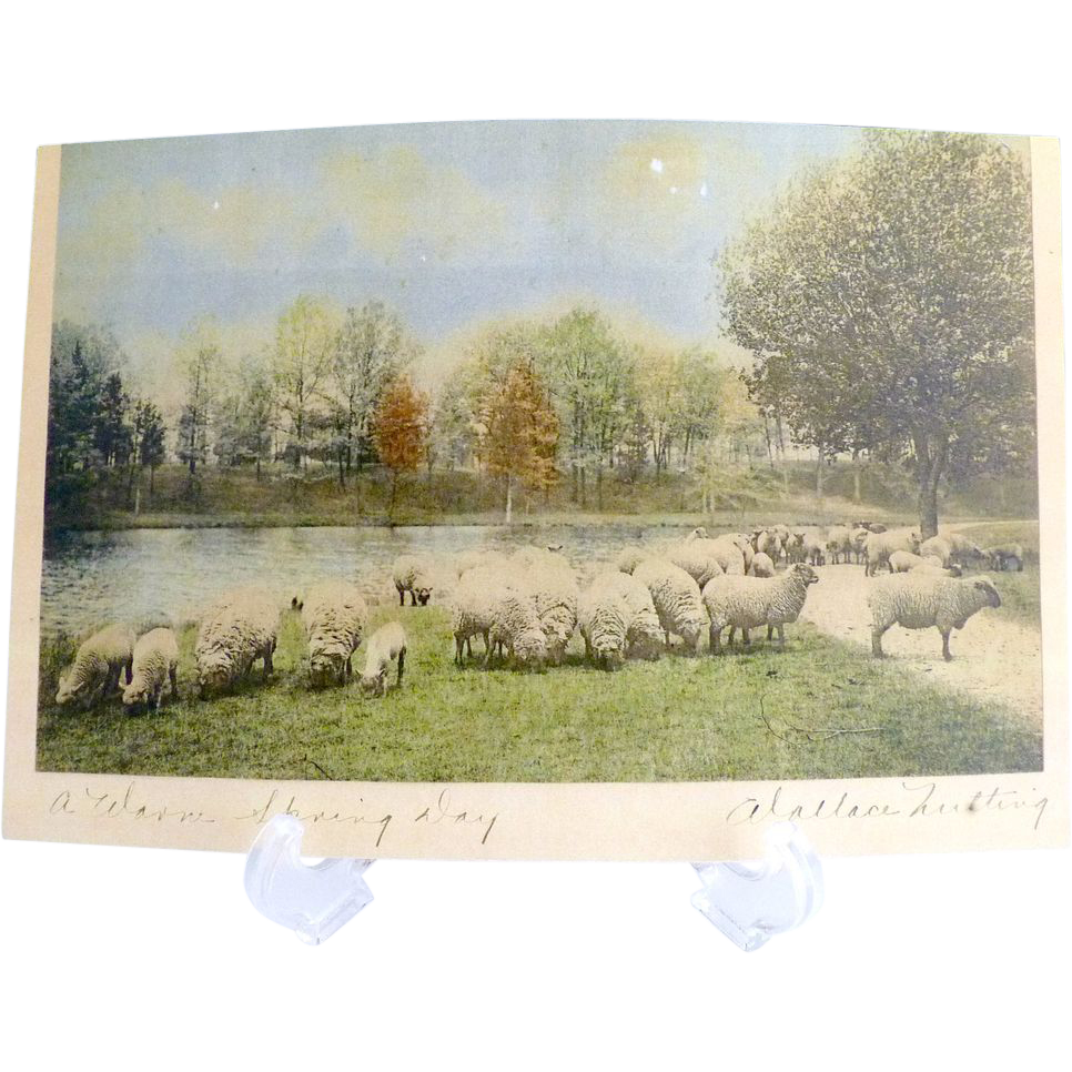 Antique Wallace Nutting print Not One of Four Hundred / A Warm Spring Day