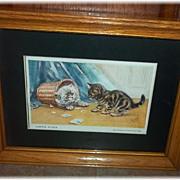 Charming Framed Printed Kitty Cat Kitten Postcard