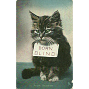 "Charming Vintage Kitty Cat  Tuck's Post Card  ""Poor Beggar Born Blind  """