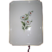 Lovely Vintage Limoges Porcelain  Daisy Floral Transfer Pattern Vanity Tray