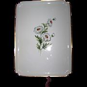 Lovely Vintage Limoges Porcelain  Daisy Floral Transfer Pattern Vanity Tray