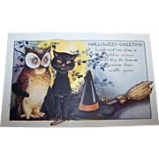 Whitney Made Halloween Greeting Black Pussy Cat & Owl Paper Postcard Post Card