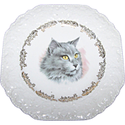 Sweet Decorative EMbossed Feline Kitty Cat Portrait Plate Lord Nelson Pottery MI England