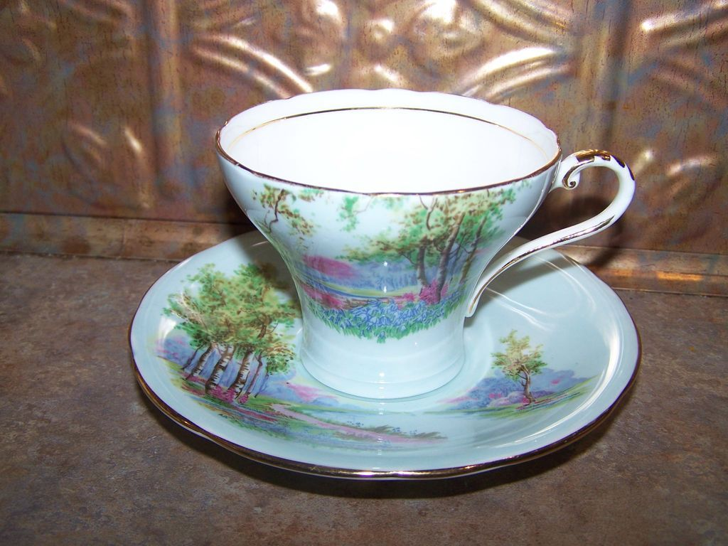 Scenic Vintage Aynsley  Tea Cup & Saucer