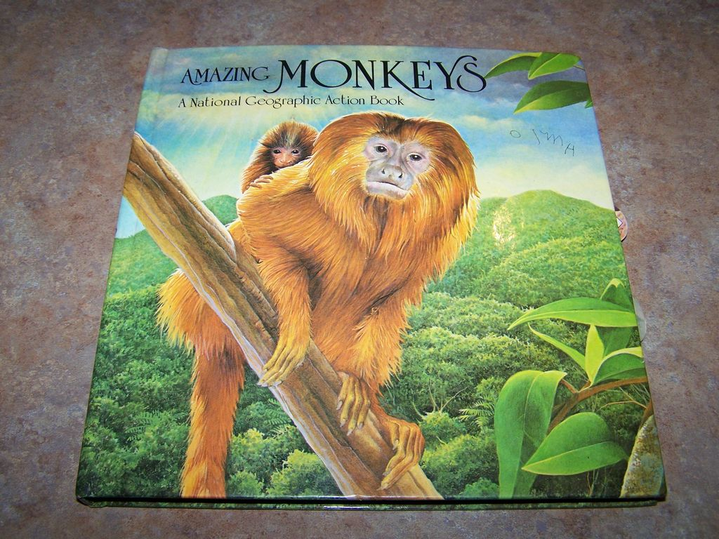 Amazing Monkey Pop-up Action Book C. 1985 National Geographic