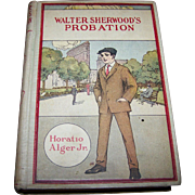 Walter Sherwood's PROBATION  or Cool Head and Warm Heart Horatio Alger Jr. Hurst & Company