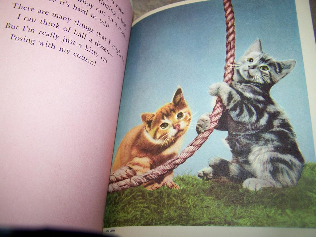 Kittens and Puppies Elf Book