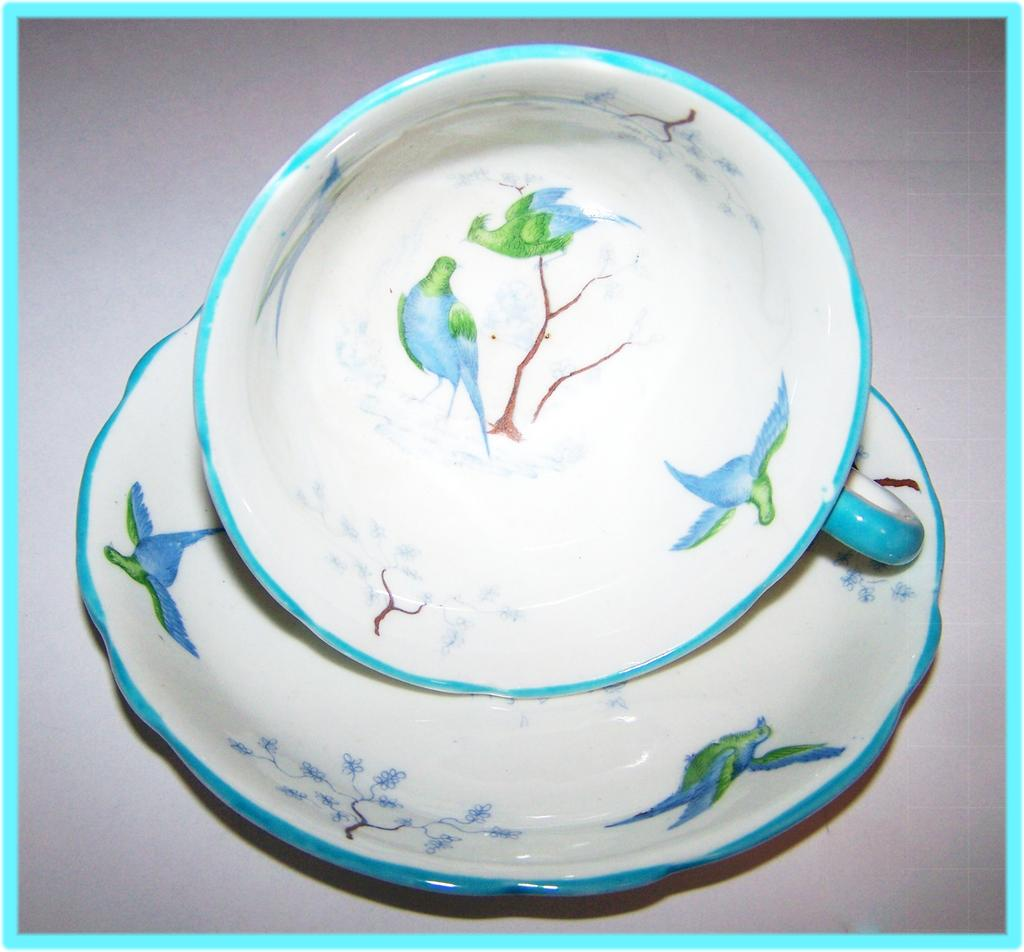 Ye Olde English Grovenor China Bird Branch Blossom Cup & Saucer