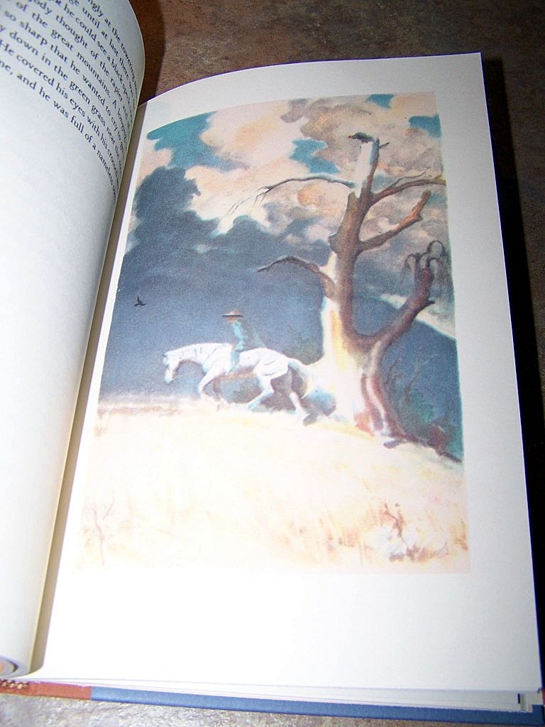 JOHN STEINBECK   The Red Pony   the Book of the Film  British  st Printing
