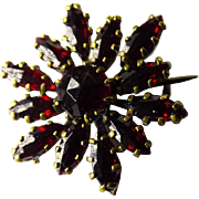 Antique Victorian Bohemian Garnet Brooch/Pin
