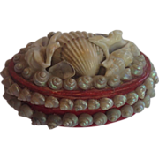 Sea Shell Box,  French  Souvenir C.1920's