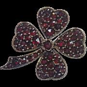 Czech Garnet Shamrock Pin, C. 1900