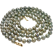 """Cultured Pearl Blue Gray Strand With 14K Clasp, 36"""""""