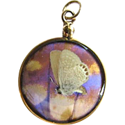 Gorgeous Antique 10K Gold Butterfly Wing Pendant Glass Locket