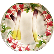 French Majolica Asparagus Plate - St. Clements - France