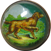 Horse Bridle Rosette Pin - Hunting Dog - Golden Retriever