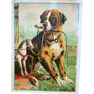 Large Chromolithograph Advertising Card Dog W/ Horse Toy