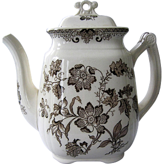 Lovely Aesthetic Transferware Coffee / Tea Pot - Chinese Plants