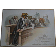 Raphael Tuck Postcard - Dogs In Court