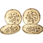 Set Of 6 Aesthetic Brown & White Plates - Chinese Plant - J. Wileman