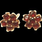 14k Gold Pidgeon Blood Red Vintage Garnet Cluster Earrings, Posts