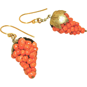 Antique Victorian Gold Gilt Sterling Salmon Coral Grapes Pendulum or Drop Earrings, Pierced
