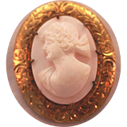 Vintage Pink Carved Shell High Relief Left Facing Oval High Relief Cameo Pin