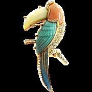 Designer Big Toucan Parrot Rhinestone Brooch