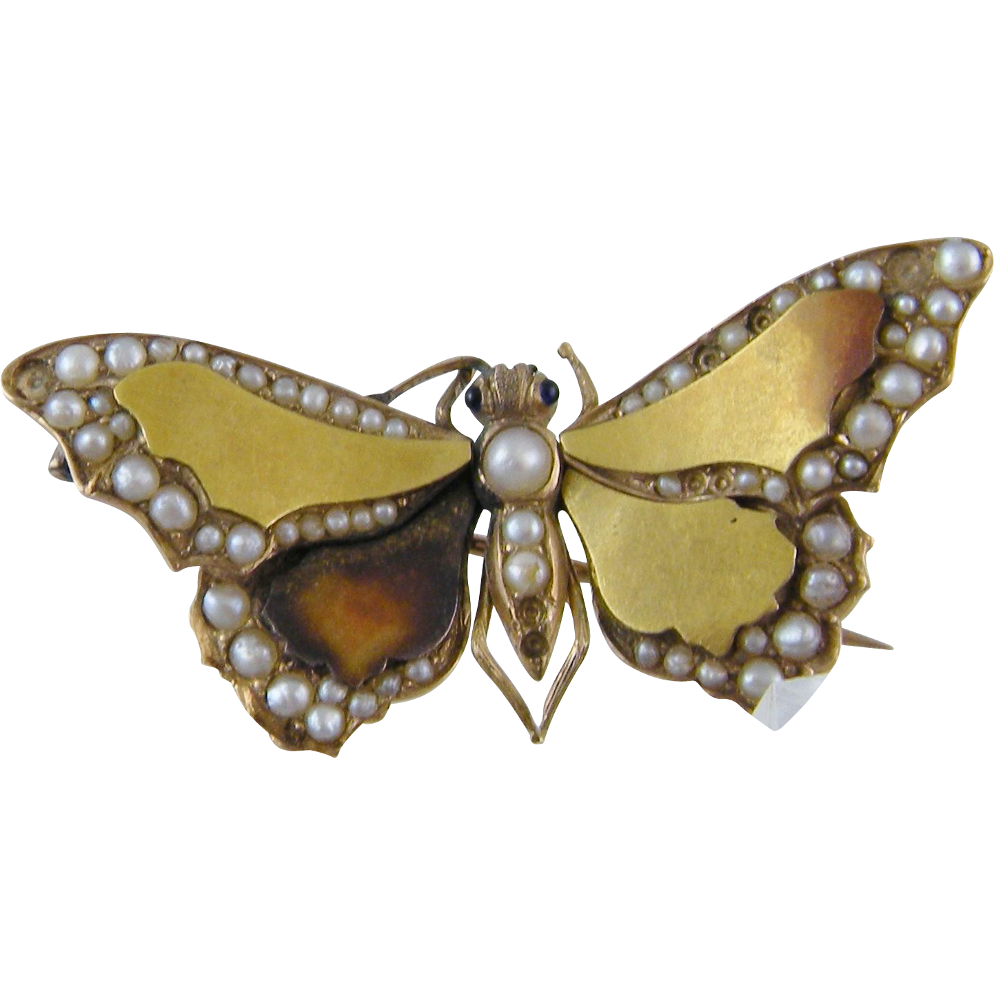 Antique Victorian 14 Kt Gold  Seed Pearls Sapphire Eyes Winged BUTTERFLY BROOCH