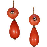 Antique Victorian Coral Drop Earrings in Gold